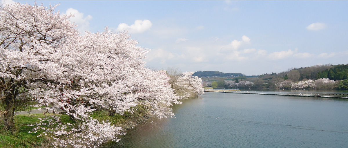 富岡市について写真